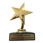 making a difference star fish award